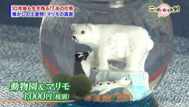 มาริโมะที่ใส่อยู่ในขวดแก้ว
