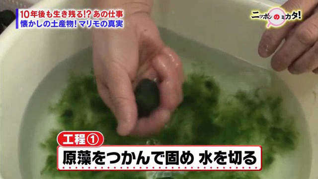 กระบวนการที่ 1 : กำสาหร่ายเอาไว้แน่นๆเพื่อทำให้เป็นก้อน พร้อมกับบีบน้ำออก