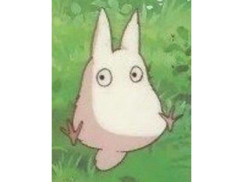 """โทโทโร่ไซส์เล็ก ในเรื่อง""""โทโทโร่เพื่อนรัก"""""""